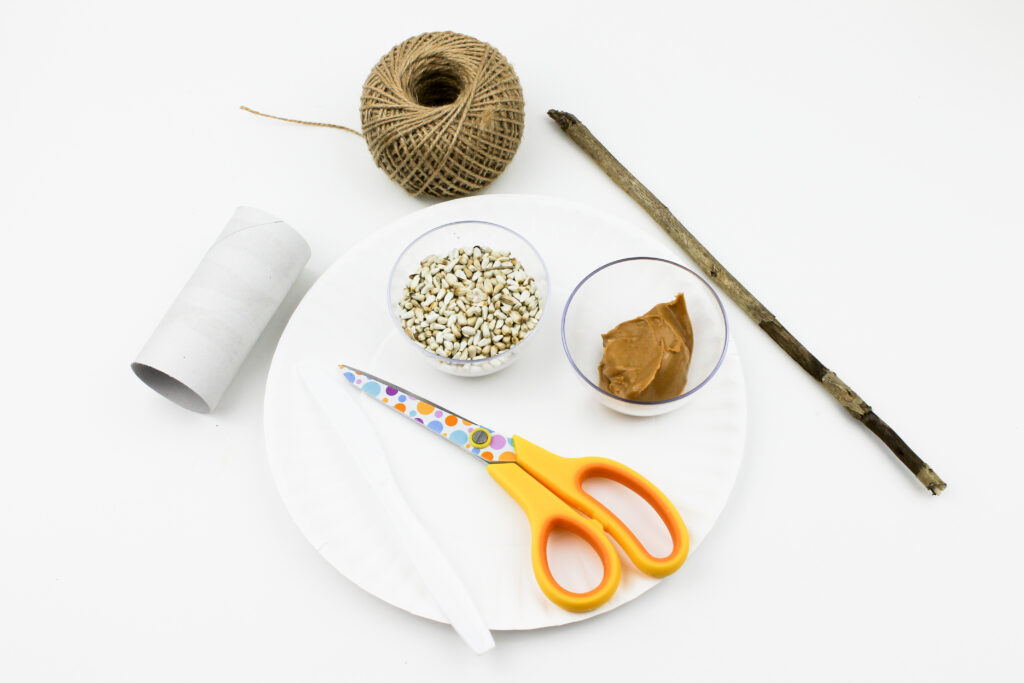 Bird feeder craft project for kids